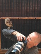 Owl Encounter - Spectator/Camera man